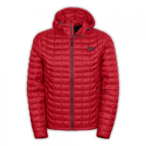 Manteau d'hiver The North Face Thermoball Hoodie (hommes)